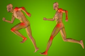 foto of male body anatomy  - Concept or conceptual 3D human man or male skeleton pain or ache anatomy transparent body - JPG