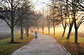 Jogging morning