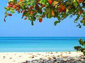 Negrils Beach
