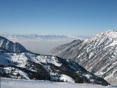 foto of snowbird  - Little Cottonwood Valley - JPG