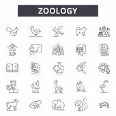 Zoology Line Icons For Web And Mobile Design. Editable Stroke Signs. Zoology  Outline Concept Illust poster