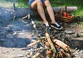Camp Tradition. Marshmallows On Stick With Bonfire And Smoke On Background. Holding Marshmallow On S poster