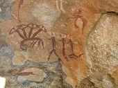 Bushman Painting From South Africa