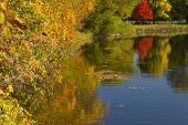 image of winona  - Fall color trees and a reflective lake - JPG