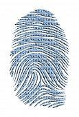 stock photo of dna fingerprinting  - Genetic Latter Finger Print Isolated on White - JPG
