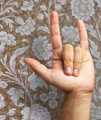 Gesturing Human Hand isolated on a floral pattern background