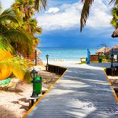 Path leading to the tropical beach of Varadero in Cuba