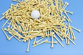 Golf Tees With Ball