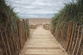 planked beach pathway
