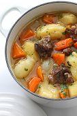 irish stew in enamel pot