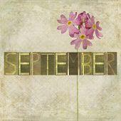Erdigen Hintergrund und Design-Element, die das Wort für den Monat September