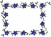 Forget me not floral border
