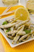 Spanish Cuisine. Deep Fried Seafood. Pescaito Frito.