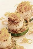 Pan fried scallops with citrus zest on plate, close-up, toned image