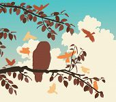 Editable vector illustration of songbirds mobbing an owl