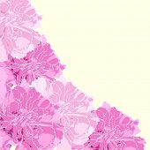 Floral background (few flowers on light background)