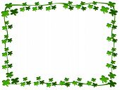 picture of fourleaf  - editable eps vector format jpeg fourleaf clover boarder - JPG