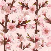 Seamless Pattern With Blossoming Pink Flowers.