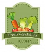 Illustration of the fresh vegetables label on a white background