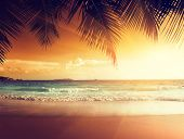 stock photo of tide  - sunset on the beach of caribbean sea - JPG