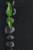 Black Stones And Leaf  Lie On A Wet Black Background