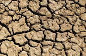 stock photo of drought  - California - JPG