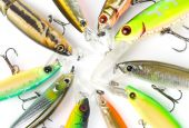 Plastic Fishing Lures Macro Shot