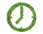 Render Natural Grass Leaf Clock Symbol