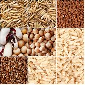 Groats and grains background