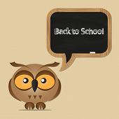 Funny Owl With School Board