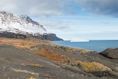 stock photo of arctic landscape  - Arctic landscape on disko island in greenland with mountain and vegetation - JPG