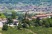 foto of farmworker  - View from the roof on Piedmont wine province of Italy - JPG