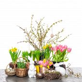 Easter Decoration With Spring Flowers And Eggs
