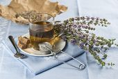 stock photo of infusion  - Mentha pulegium infusion and items to prepare it - JPG