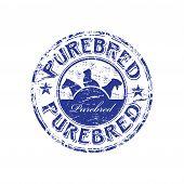 Purebred grunge rubber stamp