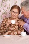 Happy elderly couple sitting at table