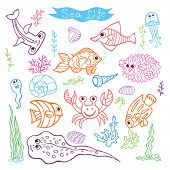 Funny Sea Life and Fish.Colored outline Doodle set