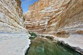 Picturesque valley in the desert. Ein Avdat Canyon, continue the journey