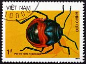 Postage Stamp Vietnam 1986 Shield Bug, Insect
