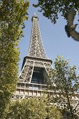 View of Eiffel tower through trees against blue sky at Paris; France