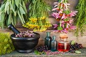 Bunches Of Healing Herbs On Wooden Wall, Mortar, Bottles And Berries