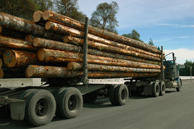 pic of logging truck  - Fully loaded logging truck on the way to mill  - JPG