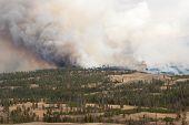 Yellowstone Burning