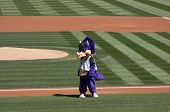 Colorado Rockies Mascot
