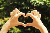 Young woman's hands making heart shape frame on green nature background