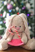 Christmas Tree  And Plush Rabbit