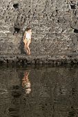 foto of stonewalled  - Portrait Of A Young Woman Standing Against Stonewall In Front Of Water - JPG