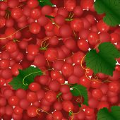 Vector Background Of Pink Bunches Of Grapes