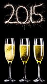 Sparky 2015 against three full glasses of champagne
