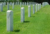 Rows of Military Gravestones